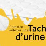 Nettoyer un matelas urine de chat